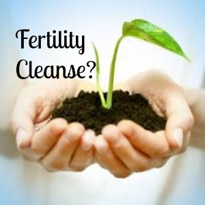Do You Need a Fertility Cleanse?